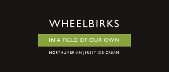Wheelbricks Logo